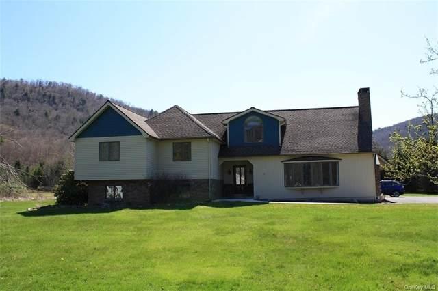 252 Rockland Road, Rockland, NY 12776 (MLS #H6037421) :: Cronin & Company Real Estate