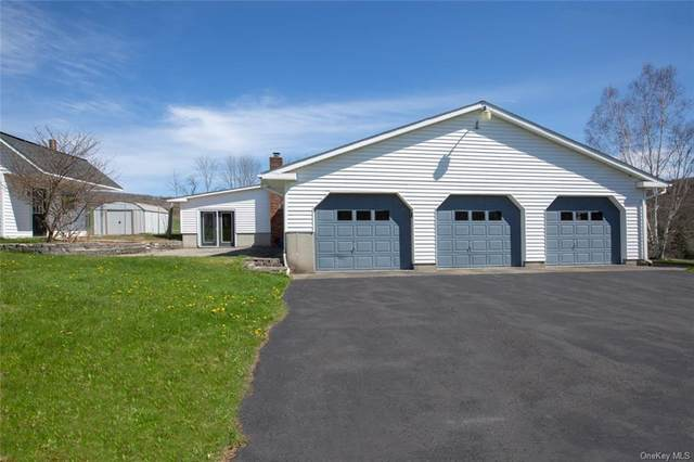 6405 State Highway 28S, Oneonta, NY 13820 (MLS #H6037601) :: Frank Schiavone with William Raveis Real Estate