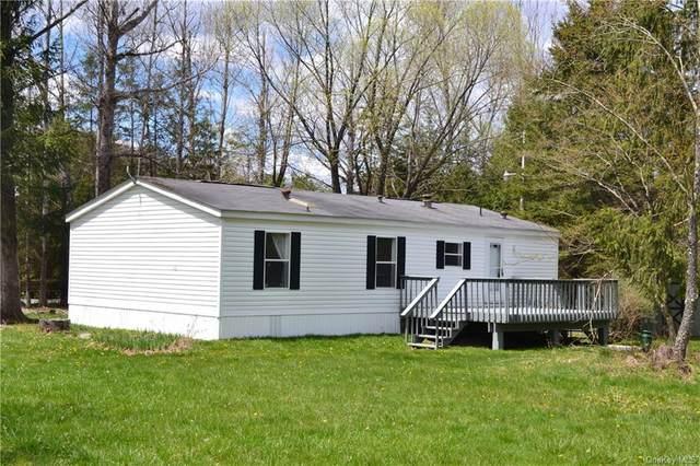 144 Bonnie Brook Road, Hancock, NY 12776 (MLS #H6038187) :: Signature Premier Properties