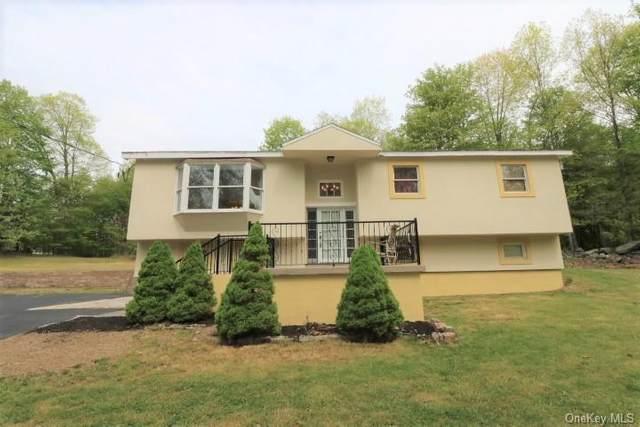 411 Fair Oaks Road, Wallkill Town, NY 10940 (MLS #H6039735) :: William Raveis Baer & McIntosh