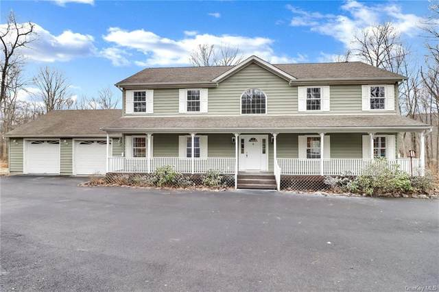 181 Penaluna Road, Warwick Town, NY 10950 (MLS #H6039903) :: The Ramundo Team