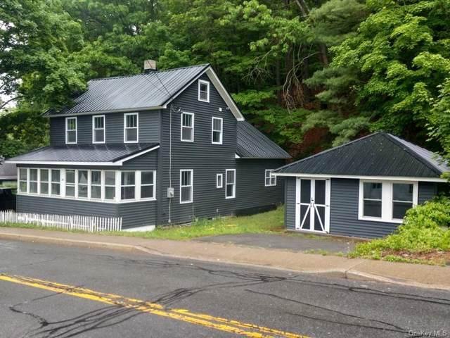 280 Canal Street, Wawarsing, NY 12428 (MLS #H6040405) :: Signature Premier Properties