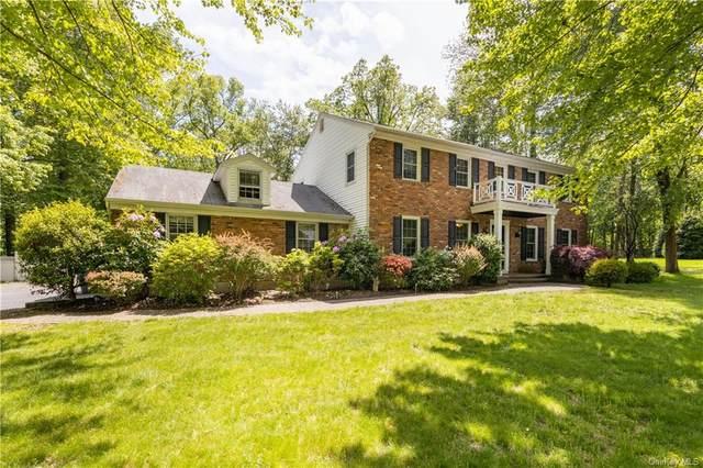 13 Elaine Drive, Clarkstown, NY 10956 (MLS #H6040707) :: Signature Premier Properties