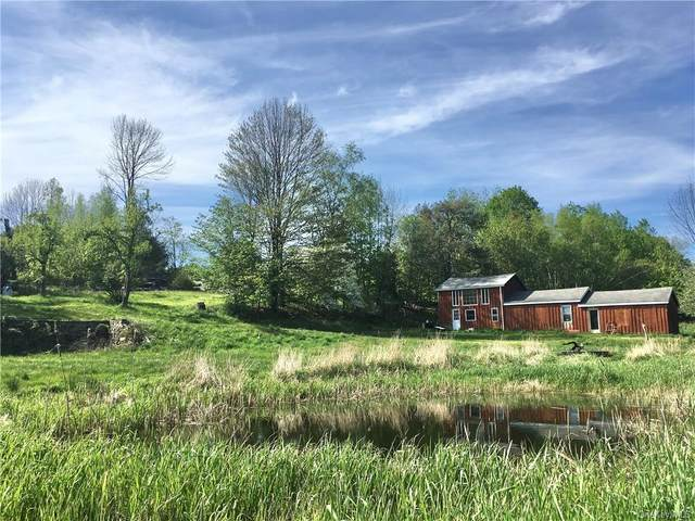 30 Walnut Mountain Road, Liberty Town, NY 12754 (MLS #H6040777) :: William Raveis Legends Realty Group