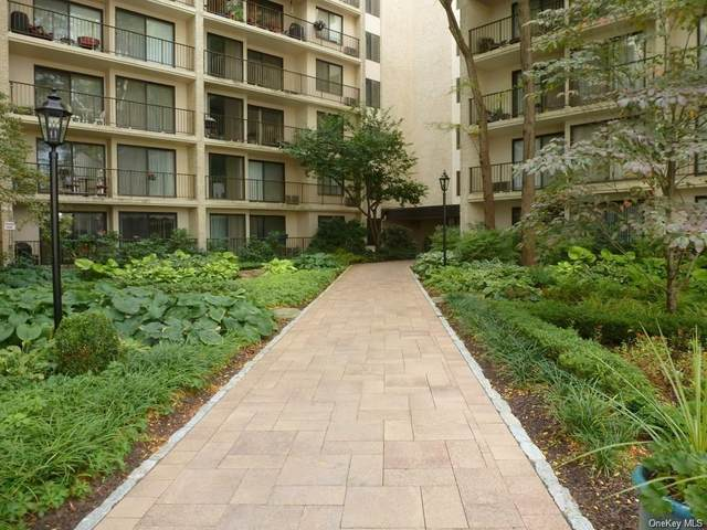 150 Overlook Avenue 4B, Peekskill, NY 10566 (MLS #H6041415) :: William Raveis Legends Realty Group
