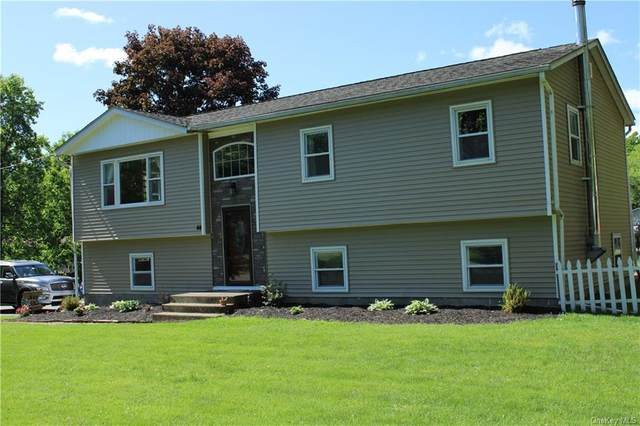 44 Park Hill Drive, New Windsor, NY 12553 (MLS #H6041478) :: William Raveis Legends Realty Group