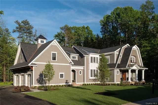 06 Falling Waters Drive Lot 6, Palenville, NY 12463 (MLS #H6042867) :: Kevin Kalyan Realty, Inc.