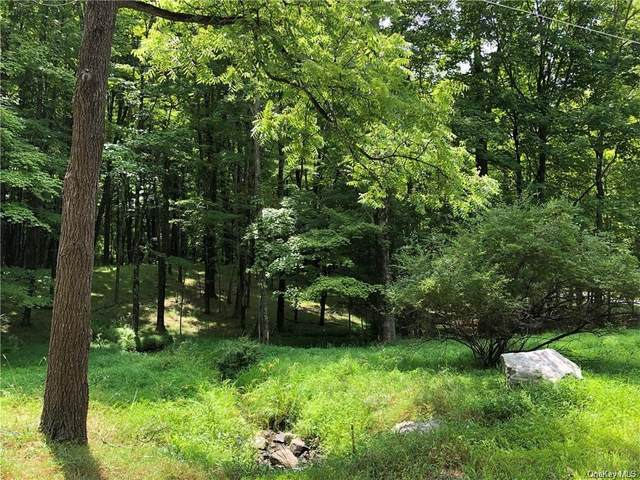 Aumick Road, Gardiner, NY 12525 (MLS #H6045962) :: William Raveis Legends Realty Group