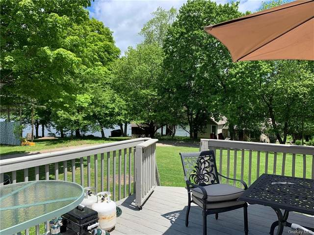 144 Dugway Drive, Pawling, NY 12564 (MLS #H6046447) :: RE/MAX Edge