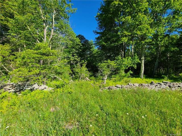 Brown Road, Wawarsing, NY 12489 (MLS #H6048408) :: William Raveis Baer & McIntosh