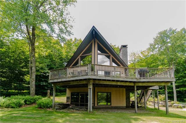 145 Crowley Road, Fremont, NY 12776 (MLS #H6048428) :: RE/MAX Edge