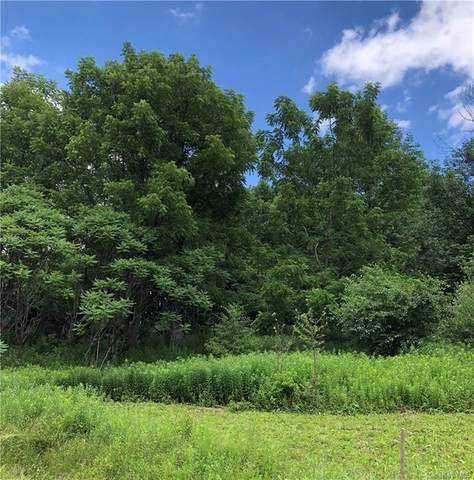 Rockefeller Road, Other, NY 13538 (MLS #H6048837) :: Frank Schiavone with William Raveis Real Estate