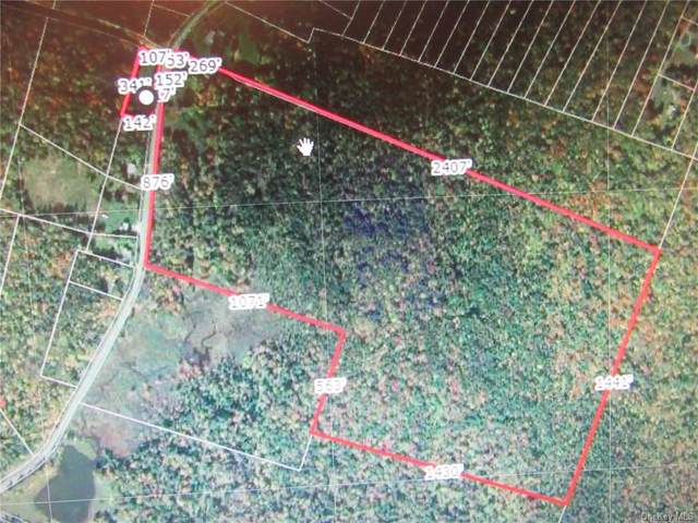 673 Cooley Road, Liberty Town, NY 12768 (MLS #H6048878) :: William Raveis Baer & McIntosh