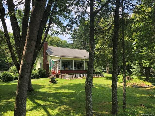 50 Puckyhuddle Road Tr 70, Bethel, NY 12720 (MLS #H6049384) :: The Home Team