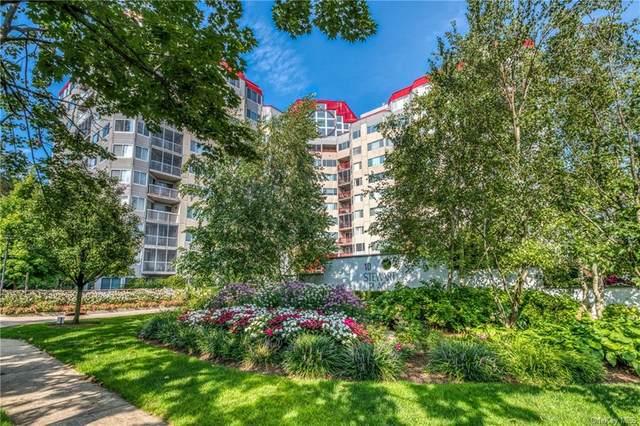 10 Stewart Place 1FW, White Plains, NY 10603 (MLS #H6051183) :: Mark Seiden Real Estate Team