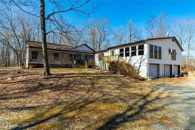 266 W Clove Mountain Road, Lagrangeville, NY 12540 (MLS #H6052136) :: Frank Schiavone with William Raveis Real Estate