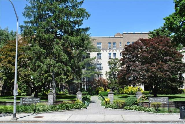 472 Gramatan Avenue H3, Mount Vernon, NY 10552 (MLS #H6052258) :: William Raveis Baer & McIntosh