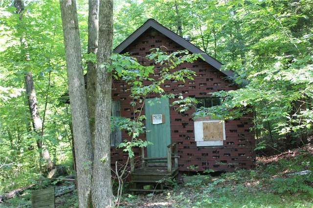 101 Harpur Hill Road, Call Listing Agent, NY 13813 (MLS #H6054102) :: Frank Schiavone with William Raveis Real Estate