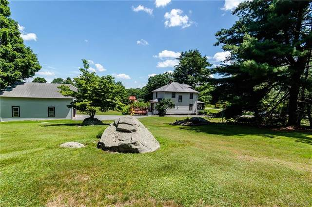 1089 County Road 114, Cochecton, NY 12726 (MLS #H6055150) :: William Raveis Baer & McIntosh