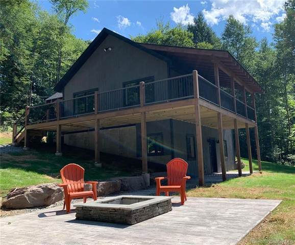 21 Boyce Road, Damascus, NY 18415 (MLS #H6057820) :: Frank Schiavone with William Raveis Real Estate