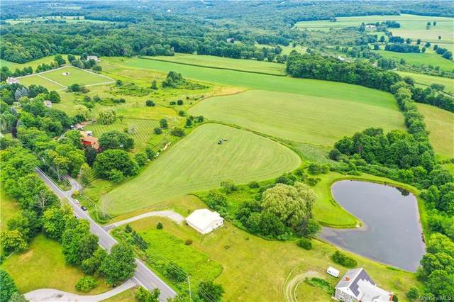 3554 Route 82, Millbrook, NY 12545 (MLS #H6057840) :: Kendall Group Real Estate | Keller Williams