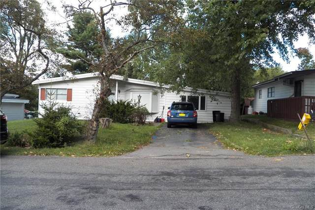 54 Straight Path, Rock Hill, NY 12775 (MLS #H6059526) :: Frank Schiavone with William Raveis Real Estate