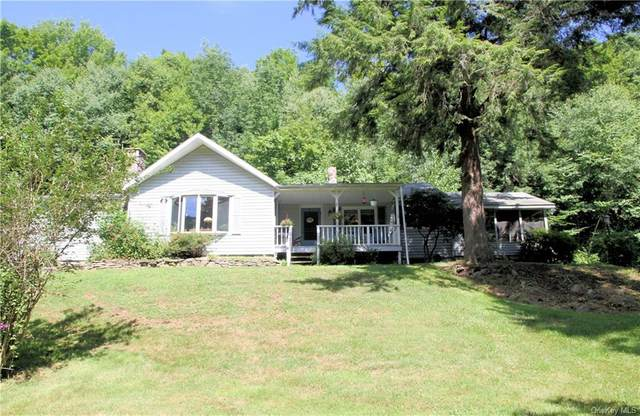 1590 Old Route 17, Roscoe, NY 12776 (MLS #H6059598) :: Mark Boyland Real Estate Team