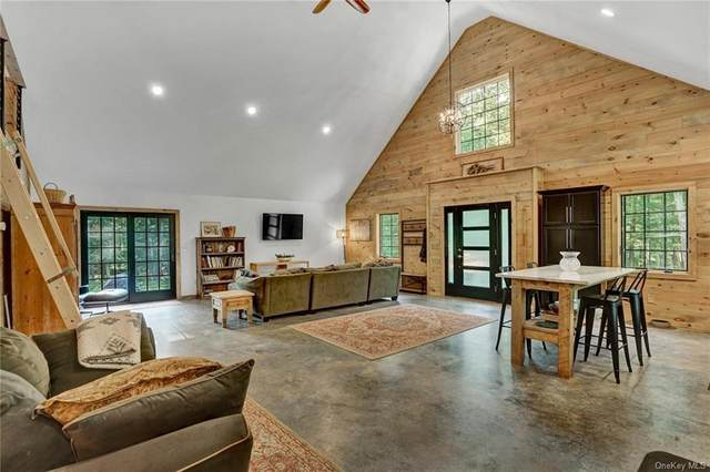223 Black Forest Road, Glen Spey, NY 12737 (MLS #H6060205) :: Frank Schiavone with William Raveis Real Estate