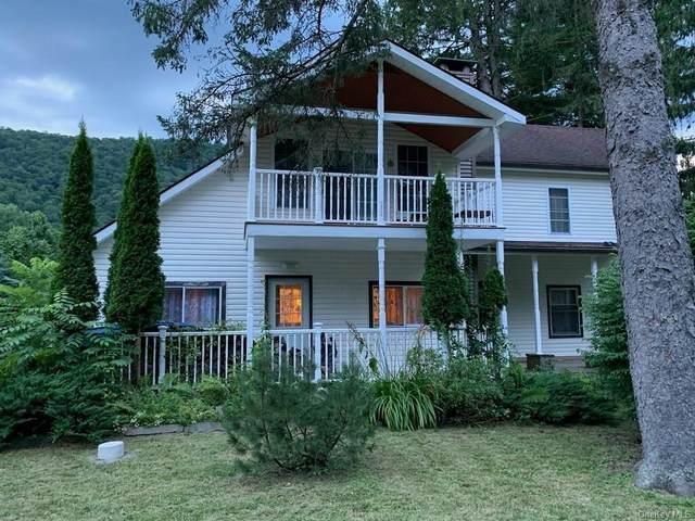 490 County Hwy 28, Hancock, NY 13774 (MLS #H6060540) :: McAteer & Will Estates | Keller Williams Real Estate