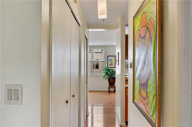 106 Admiral Lane 4106B, Bronx, NY 10473 (MLS #H6061316) :: Kevin Kalyan Realty, Inc.