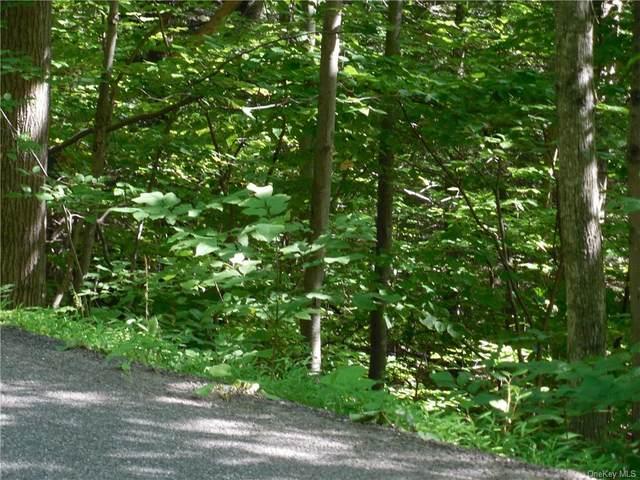 Traver Hollow Road, Boiceville, NY 12412 (MLS #H6061350) :: William Raveis Baer & McIntosh