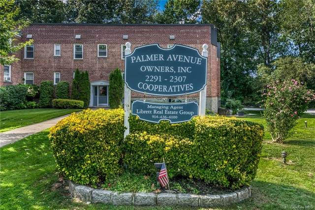 2295 Palmer N, New Rochelle, NY 10801 (MLS #H6063055) :: William Raveis Baer & McIntosh