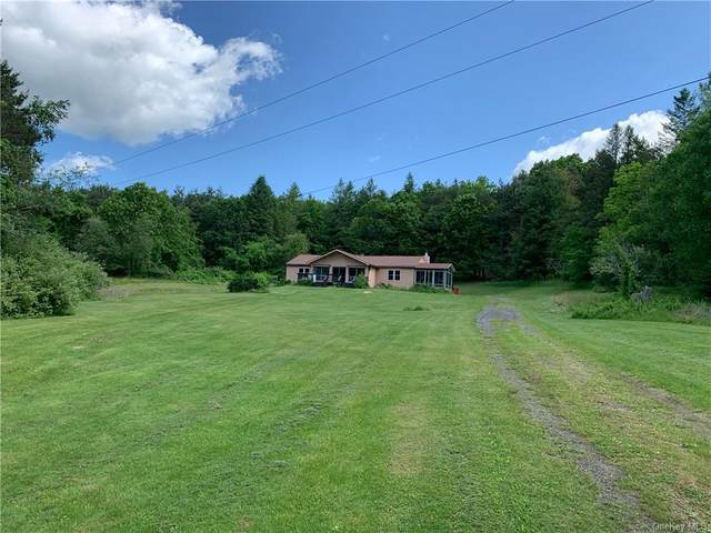 172. Sky Farm Road, Copake, NY 12516 (MLS #H6063281) :: Frank Schiavone with William Raveis Real Estate