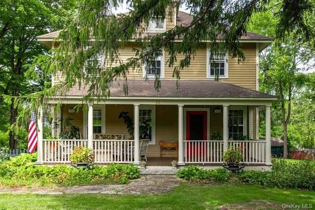 13 Prospect Avenue, Amenia, NY 12501 (MLS #H6065398) :: McAteer & Will Estates | Keller Williams Real Estate
