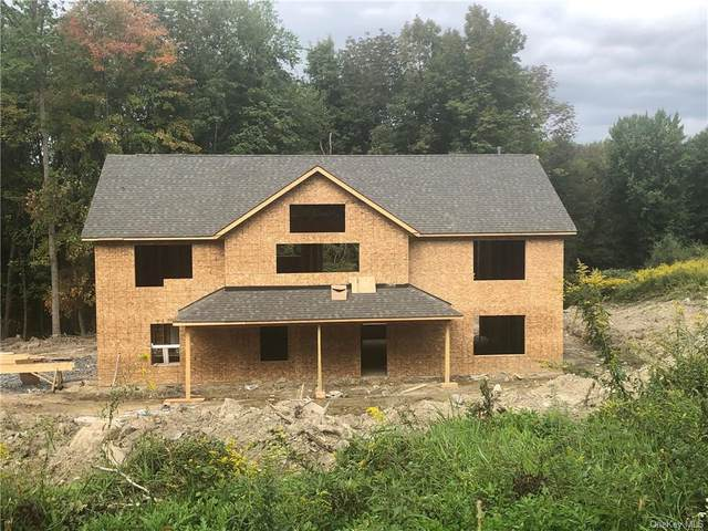 77 Bender Road, Westtown, NY 10998 (MLS #H6066978) :: The McGovern Caplicki Team