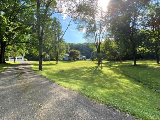 15 Dewitt Lane, Woodstock, NY 12498 (MLS #H6067232) :: McAteer & Will Estates | Keller Williams Real Estate