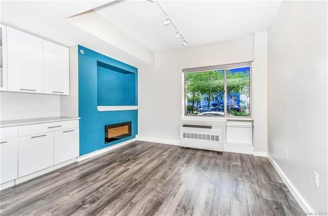 3585 Greystone Avenue 1B, Bronx, NY 10463 (MLS #H6068325) :: Kevin Kalyan Realty, Inc.