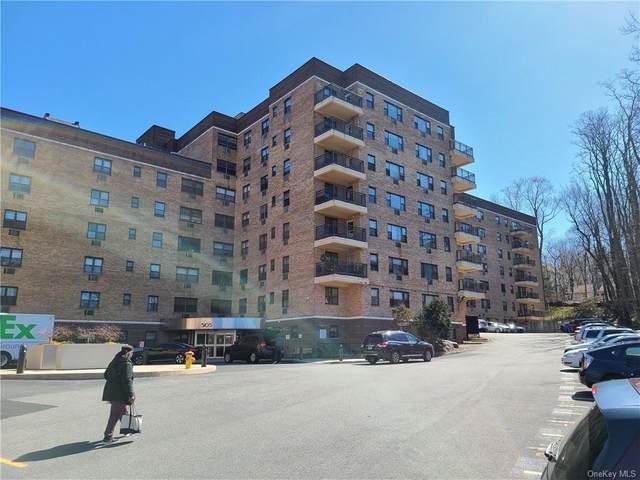 505 Central Avenue #527, White Plains, NY 10606 (MLS #H6068499) :: Shalini Schetty Team