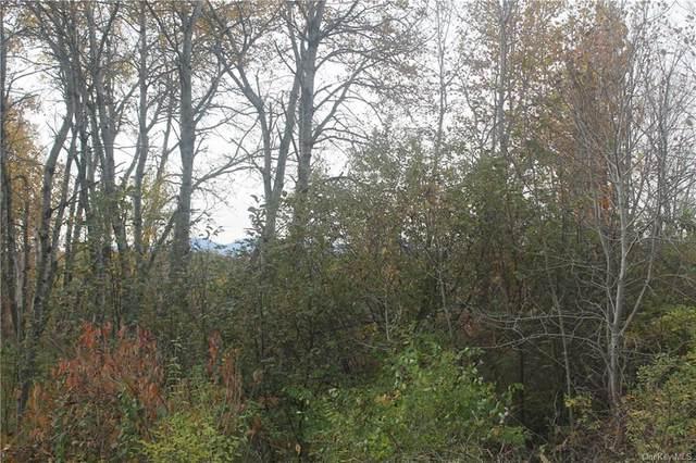 County Rte 410, Berne, NY 12193 (MLS #H6070843) :: McAteer & Will Estates | Keller Williams Real Estate