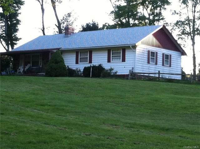425 Horseshoe Lake Road, Swan Lake, NY 12783 (MLS #H6071103) :: William Raveis Baer & McIntosh