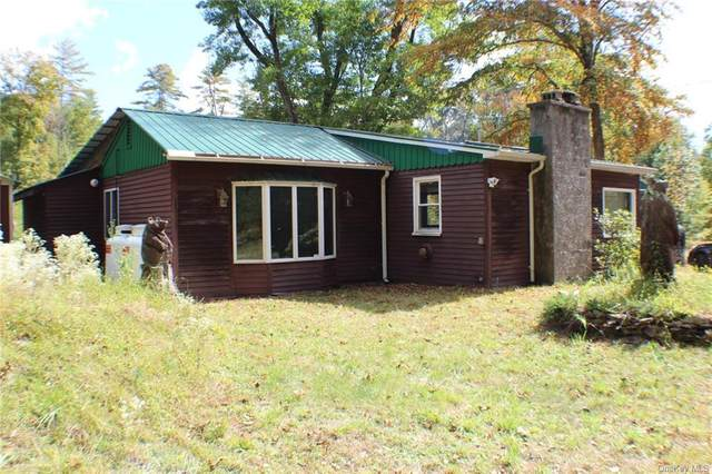 136 Yulan Barryville Road, Barryville, NY 12719 (MLS #H6071249) :: Nicole Burke, MBA | Charles Rutenberg Realty