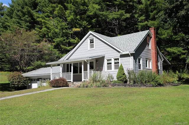 955 Callicoon Road, Damascus, NY 18415 (MLS #H6071321) :: Kendall Group Real Estate | Keller Williams