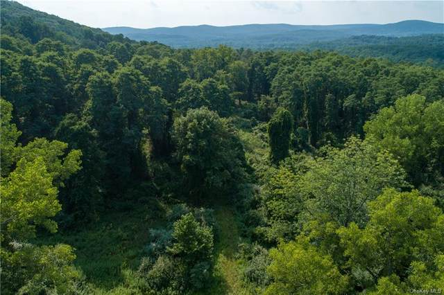 8 Ravine Road, Pawling, NY 12564 (MLS #H6072629) :: Signature Premier Properties