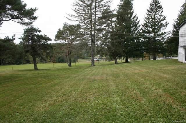 55 Prince Road, Swan Lake, NY 12783 (MLS #H6072653) :: William Raveis Baer & McIntosh