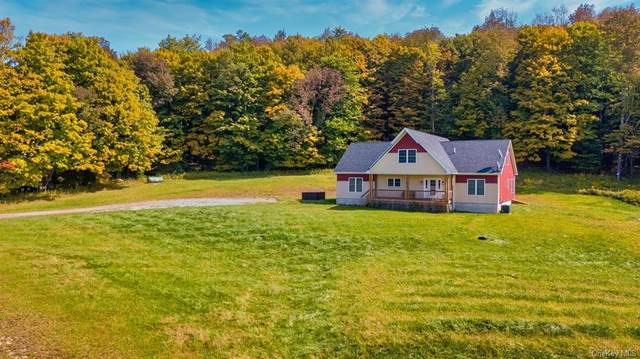 366 County Road 93, Fremont, NY 12736 (MLS #H6072935) :: William Raveis Baer & McIntosh