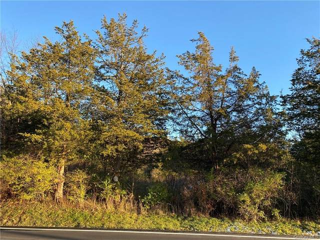 199 Route, Pine Plains, NY 12567 (MLS #H6074345) :: Keller Williams Points North - Team Galligan