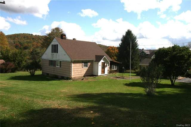 22 Fauble Road, Jeffersonville, NY 12748 (MLS #H6074372) :: Kendall Group Real Estate | Keller Williams