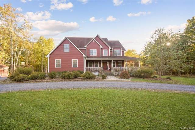 1117 Old Ford Road, New Paltz, NY 12561 (MLS #H6074487) :: Nicole Burke, MBA | Charles Rutenberg Realty