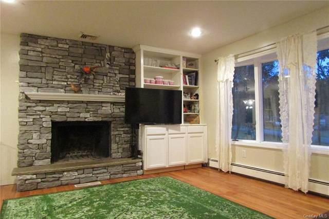 42 Blaha Lane, Bloomingburg, NY 12721 (MLS #H6074554) :: Kendall Group Real Estate | Keller Williams