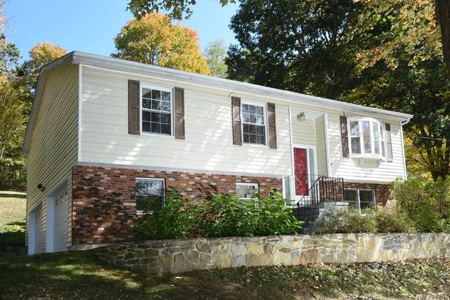 294 Route 292, Holmes, NY 12531 (MLS #H6075445) :: Kendall Group Real Estate | Keller Williams